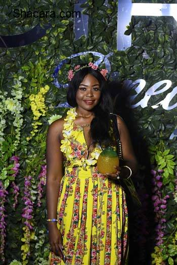 Banky W, Dorcas Shola Fapson, Olisa Adibua, Ebuka, More Stars Attend The Ciroc Pineapple Launch